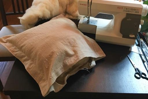 sewing the van fan ravioli